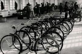 Tovarna koles in pisalnih strojev Rog